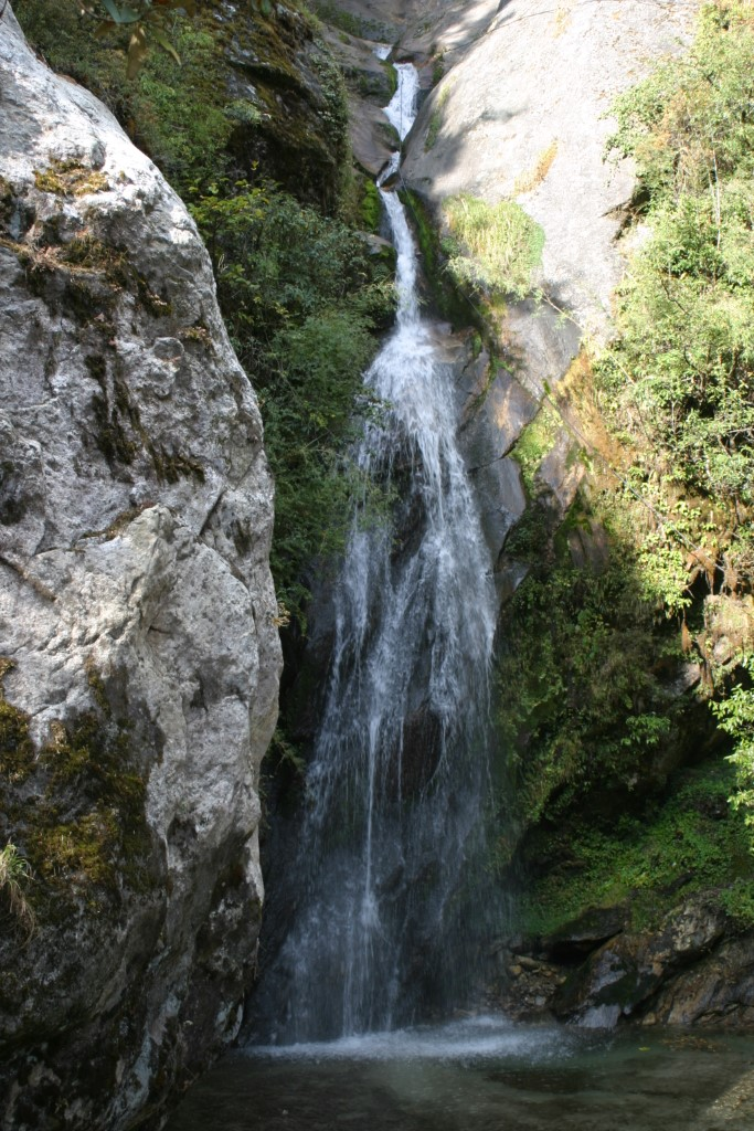 Waterfall by trail