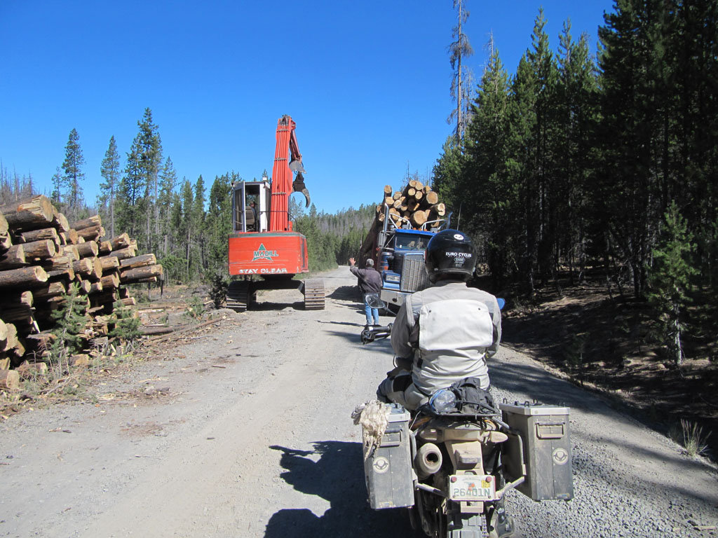 Stopped by logging