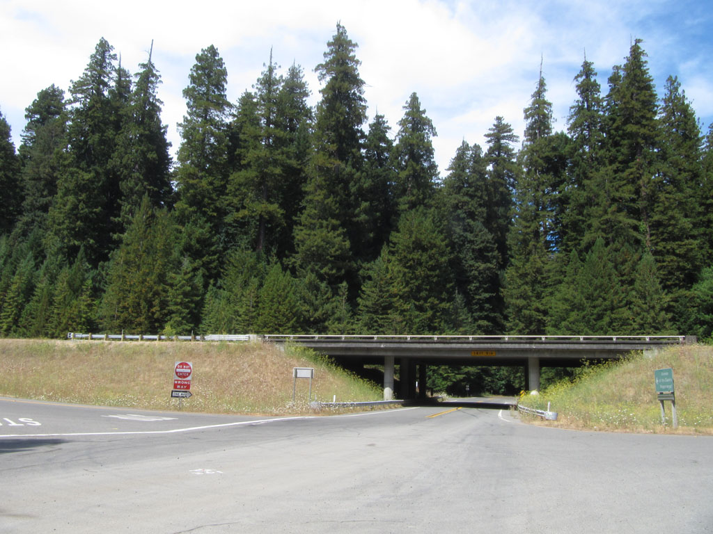 Start of Avenue of the Giants