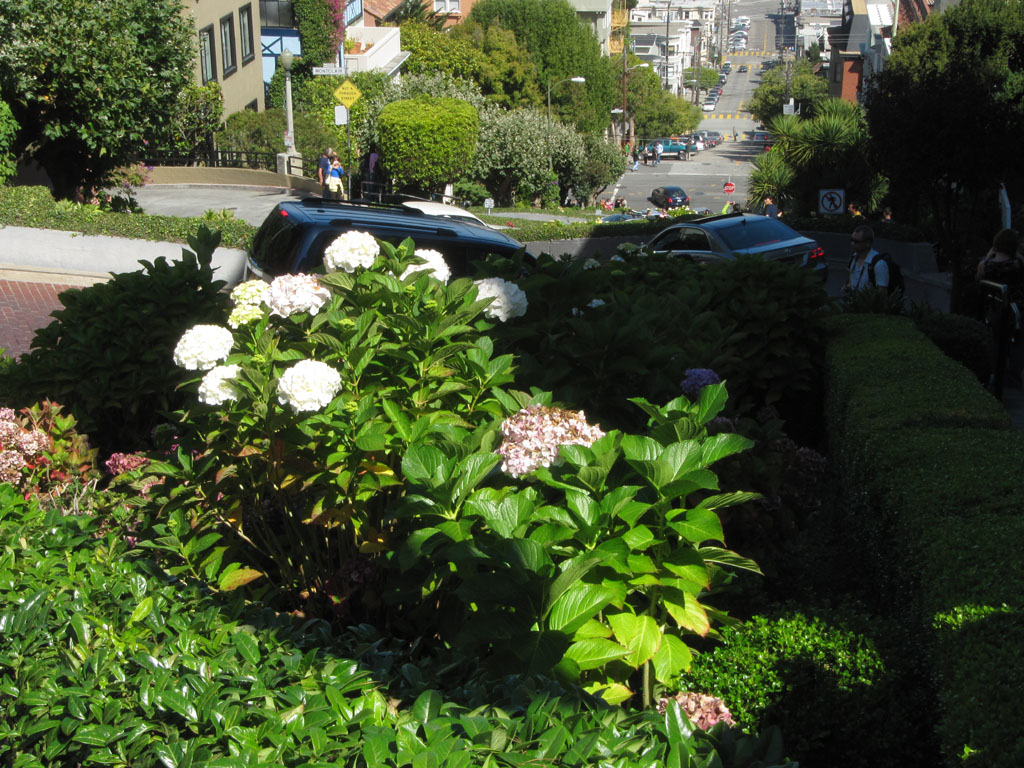 The infamous windy bit of Lombard Street