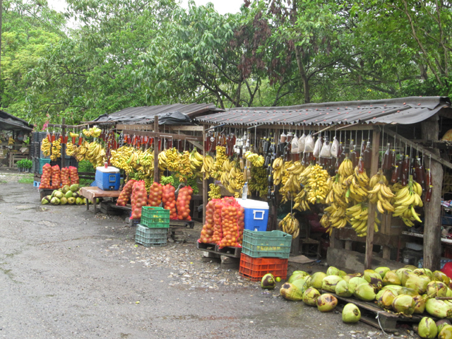Roadside fruit stall, rural Mexico...