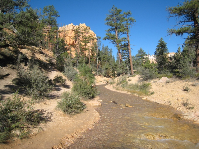 The stream Ebenezer Bryce made sure carried water all year round… 110 years ago…